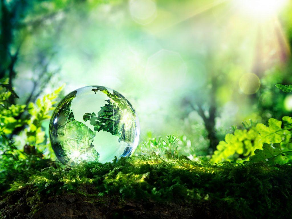 environmentals